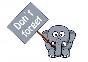 elephant-279901_960_720