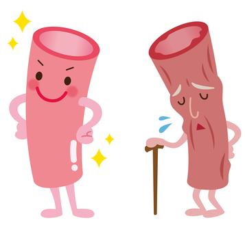血管年齢 医療 健康