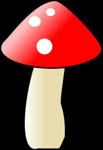 mushroom-35596_960_720
