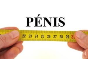 ペニスサイズの測り方