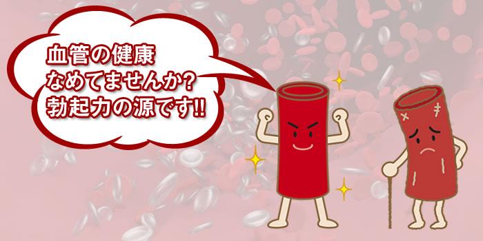 血管の健康 なめてませんか? 勃起力の源です!!